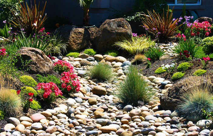 landscape design, water conscious, Tracy, Livermore, Pleasanton